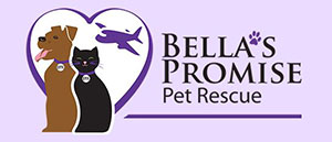 Bella's Promise Pet Rescue