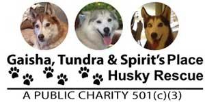 GTS Husky Rescue