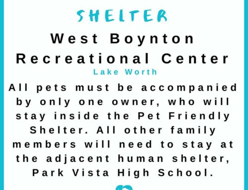 Pet Friendly Hurricane Shelter Palm Beach County, FL