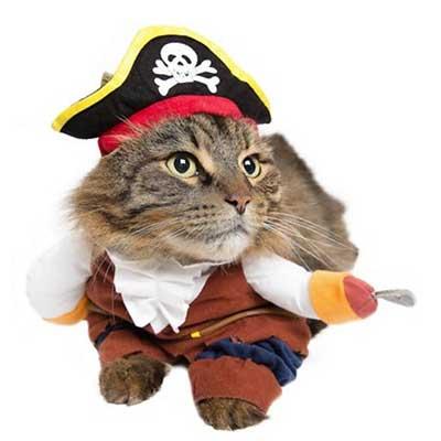 Pirate Dog & Cat Halloween Costume