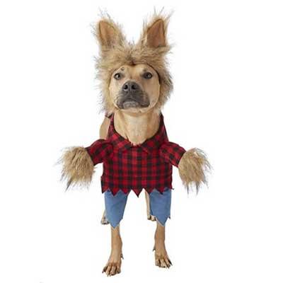 Werewolf Dog Cat Halloween Costume