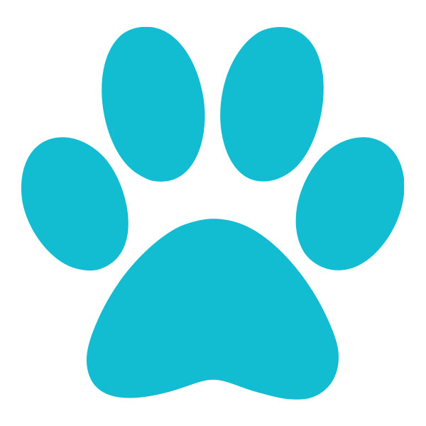 Teal Paw