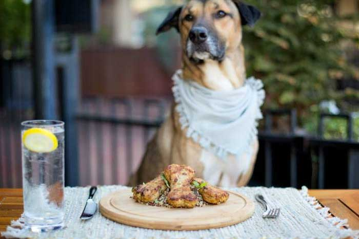 Yappy Hour for charity Downtown Delray Beach