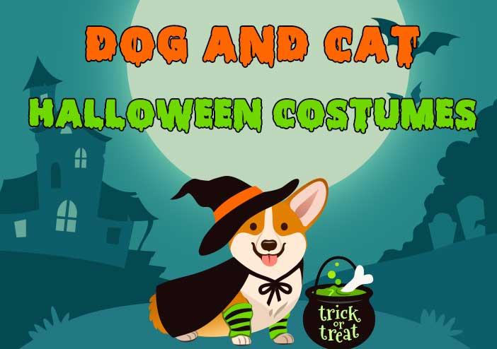 Pet Dog Cat Halloween Costumes